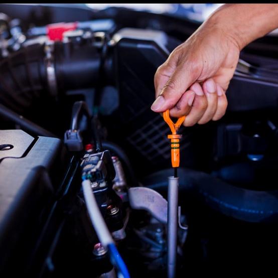 car upkeep and fluid check